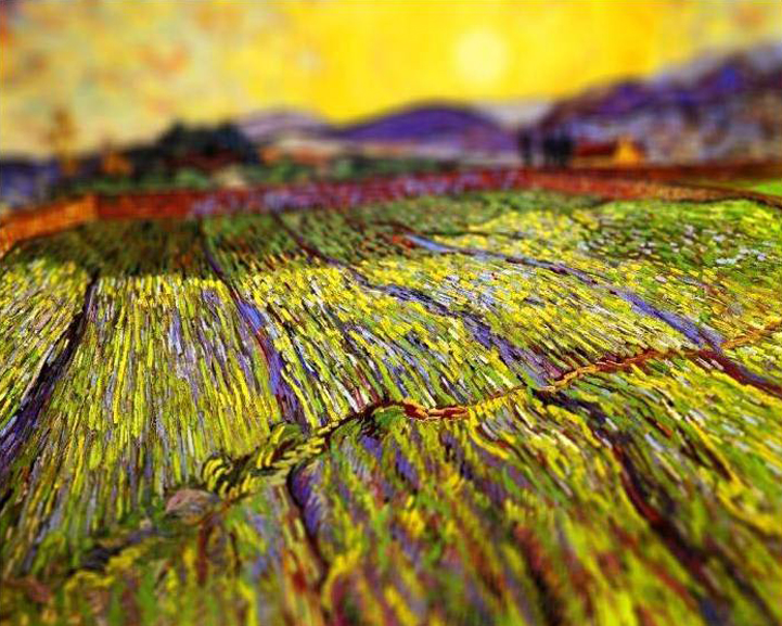Tilt shift Van Gogh by Serena Malyon